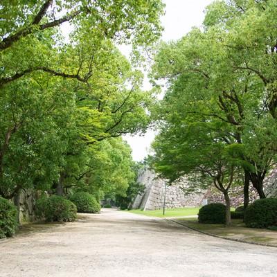 「岡山城の石垣と脇の道」の写真素材