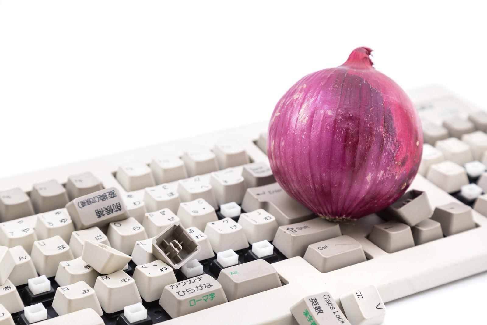 「紫玉葱と操作出来なくなったキーボード」の写真
