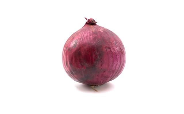 紫玉葱(レッドオニオン)の写真