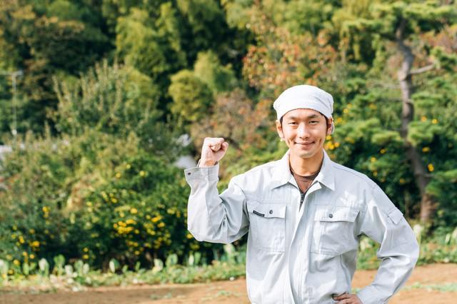 日本の農家を応援しています!の写真