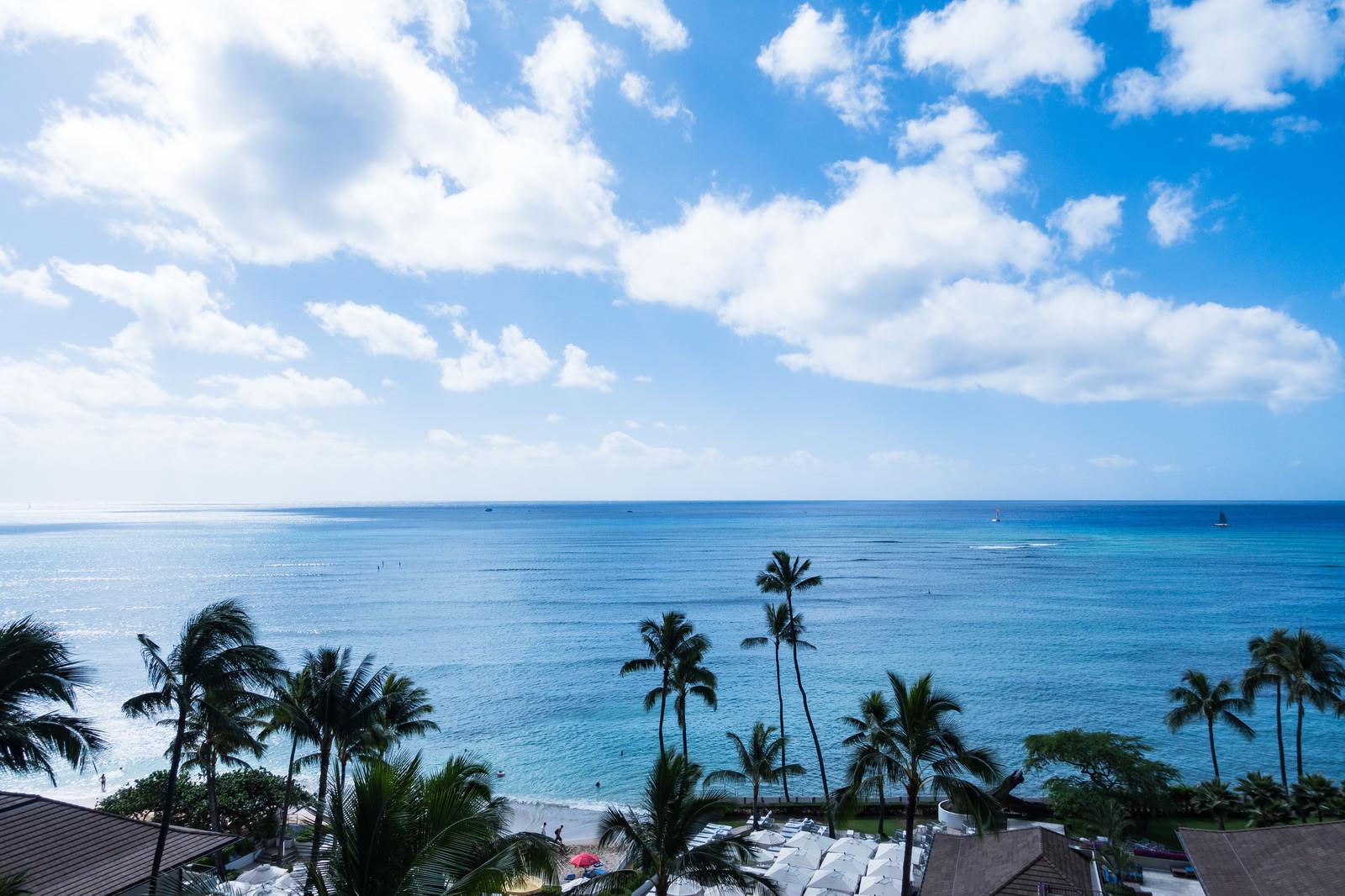 「絵葉書のようなハワイの景色」の写真