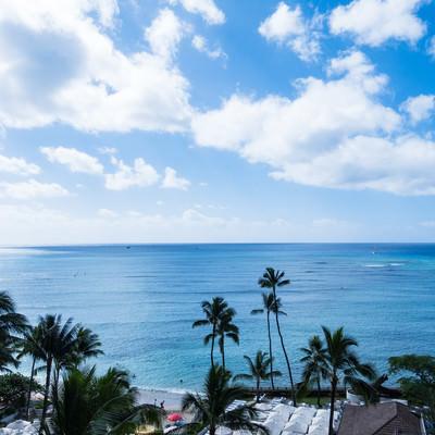 絵葉書のようなハワイの景色の写真