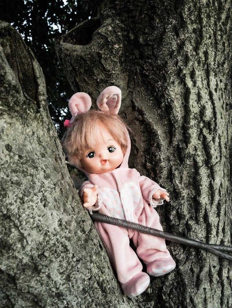 「木にくくりつけられた人形」の写真