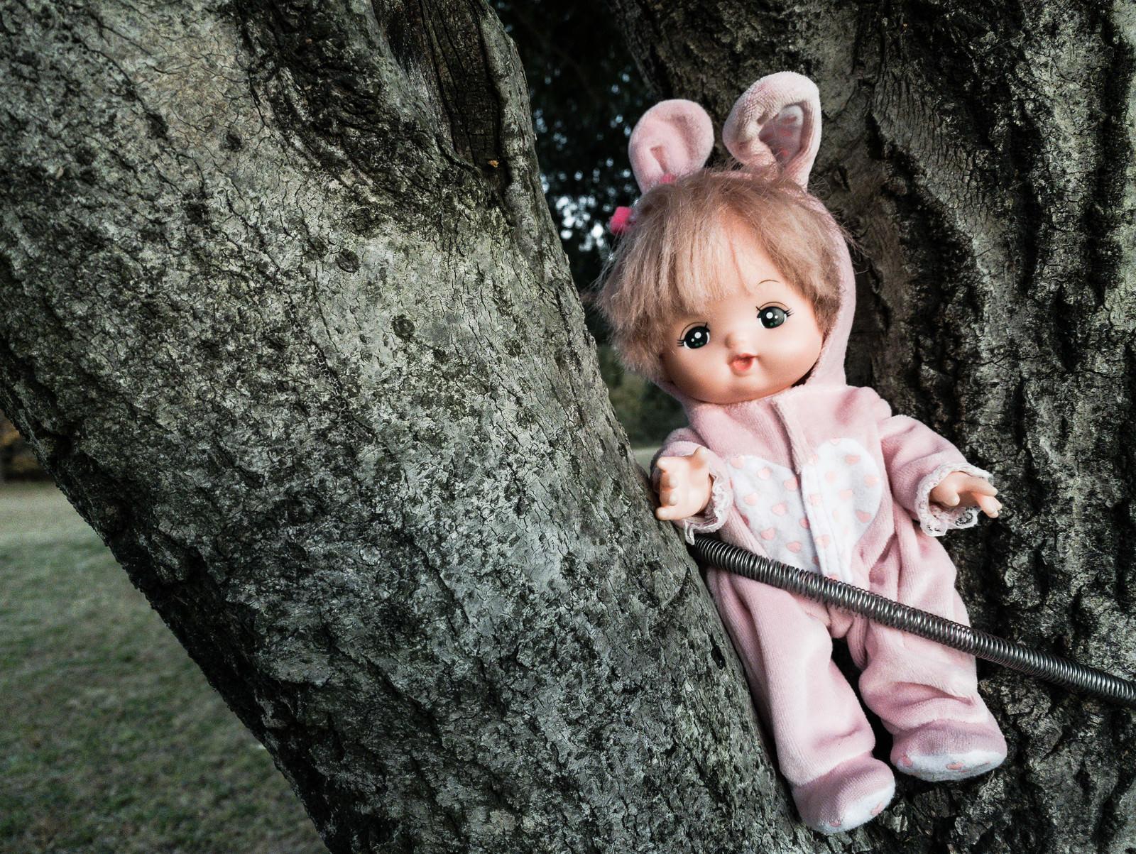 「子供が落とした人形」の写真
