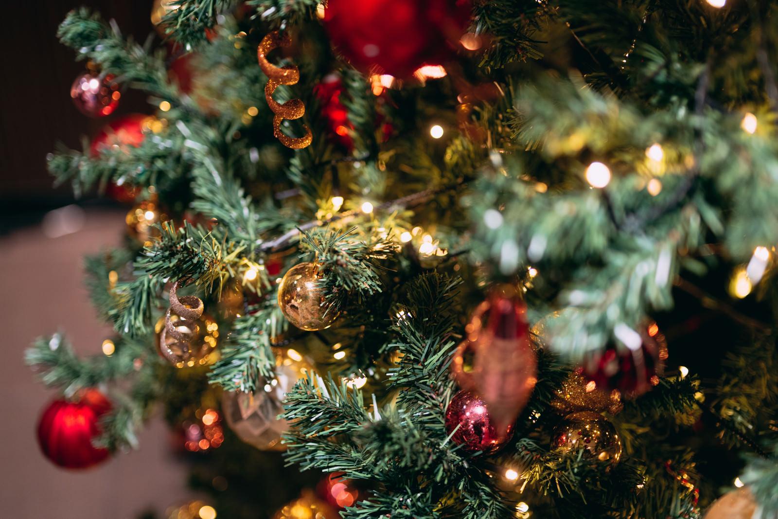 「クリスマスツリーと飾り」の写真