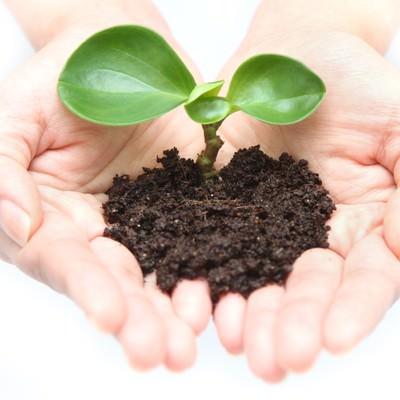 「両手で苗を持つ手(地球環境)」の写真素材