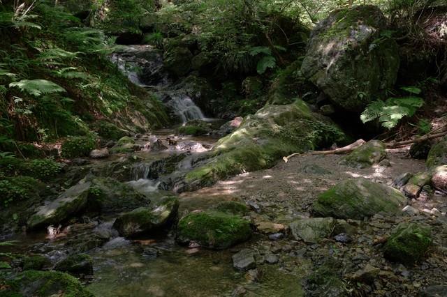 山奥の小川の写真