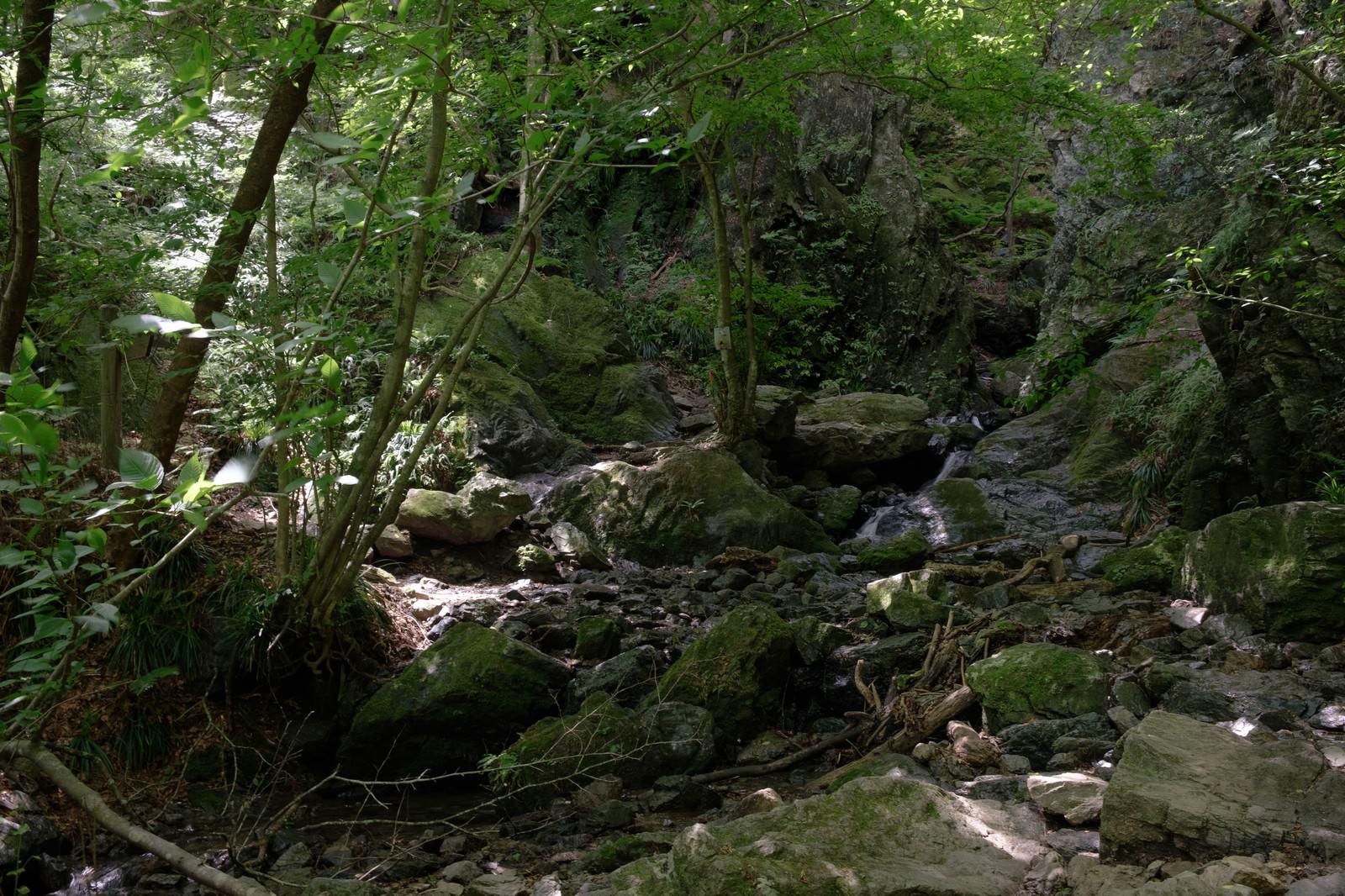 「牢門(渓谷)」の写真