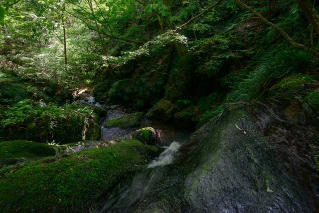 上から覗く藤懸の滝の写真