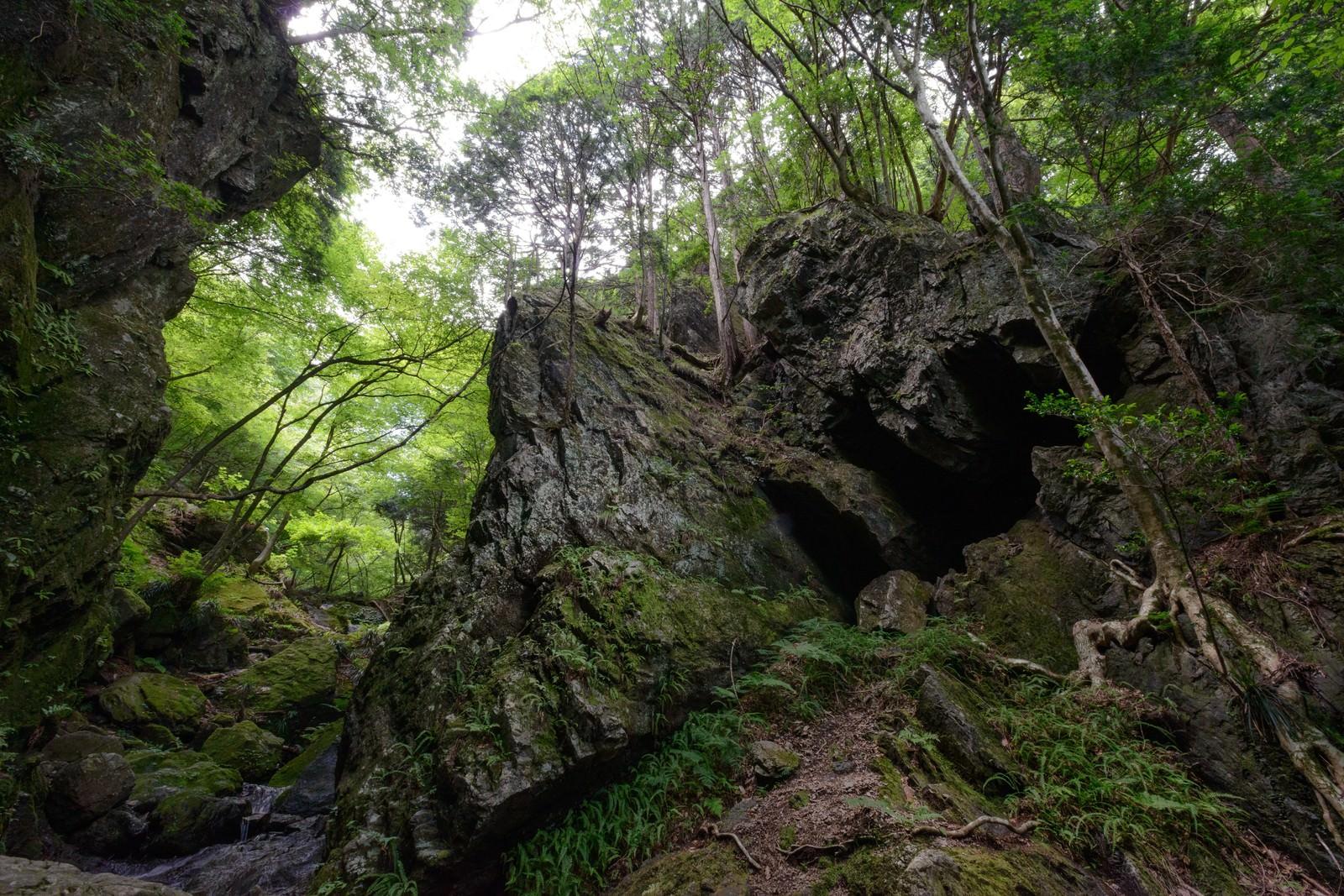 「立ちはだかる岩の門」の写真