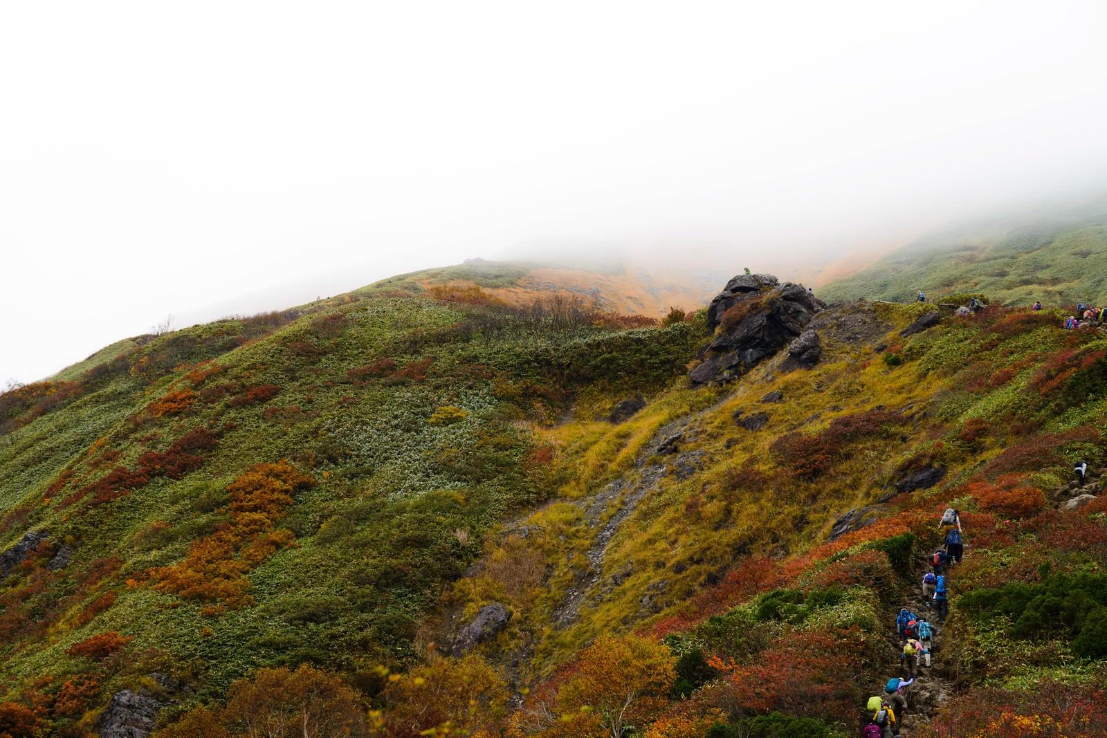 「黄葉する秋の谷川岳と登山者の姿」の写真