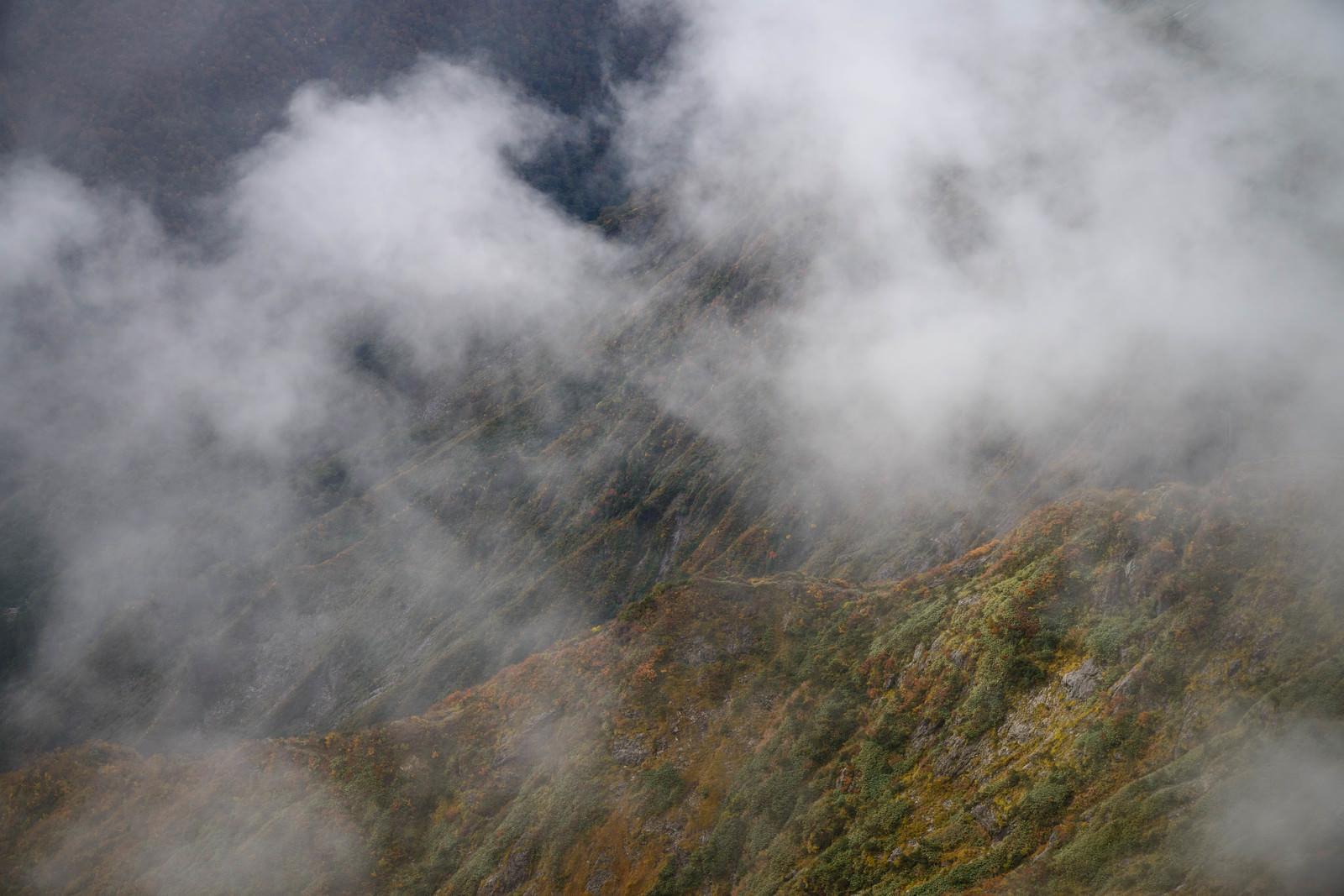 「雲がかかる色づく山」の写真