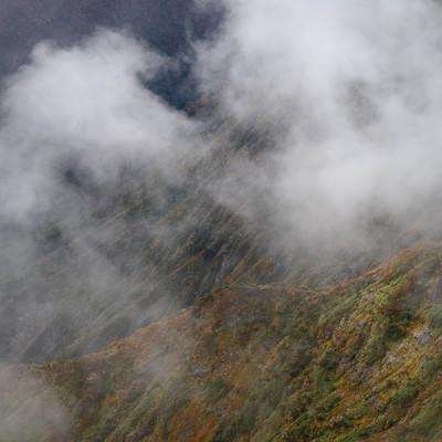 雲がかかる色づく山の写真