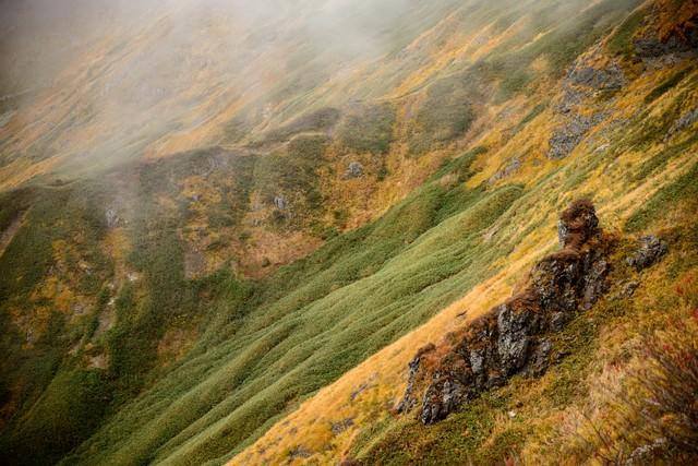 霧が駆る秋の谷川岳の山肌の写真
