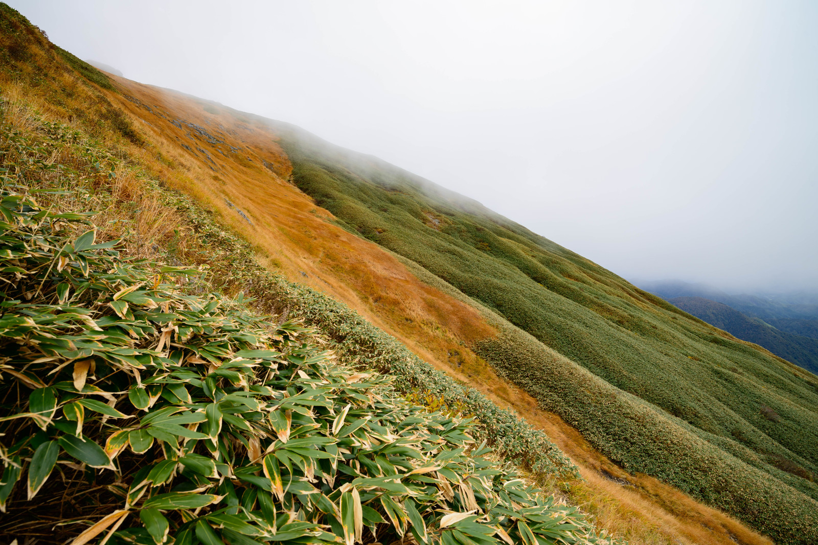 「秋色の谷川岳斜面 | 写真の無料素材・フリー素材 - ぱくたそ」の写真