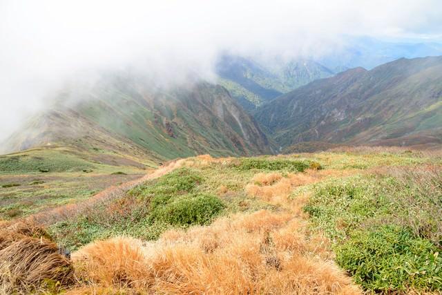 沸き立つ霧と秋の谷川岳に見る枯れ草の写真
