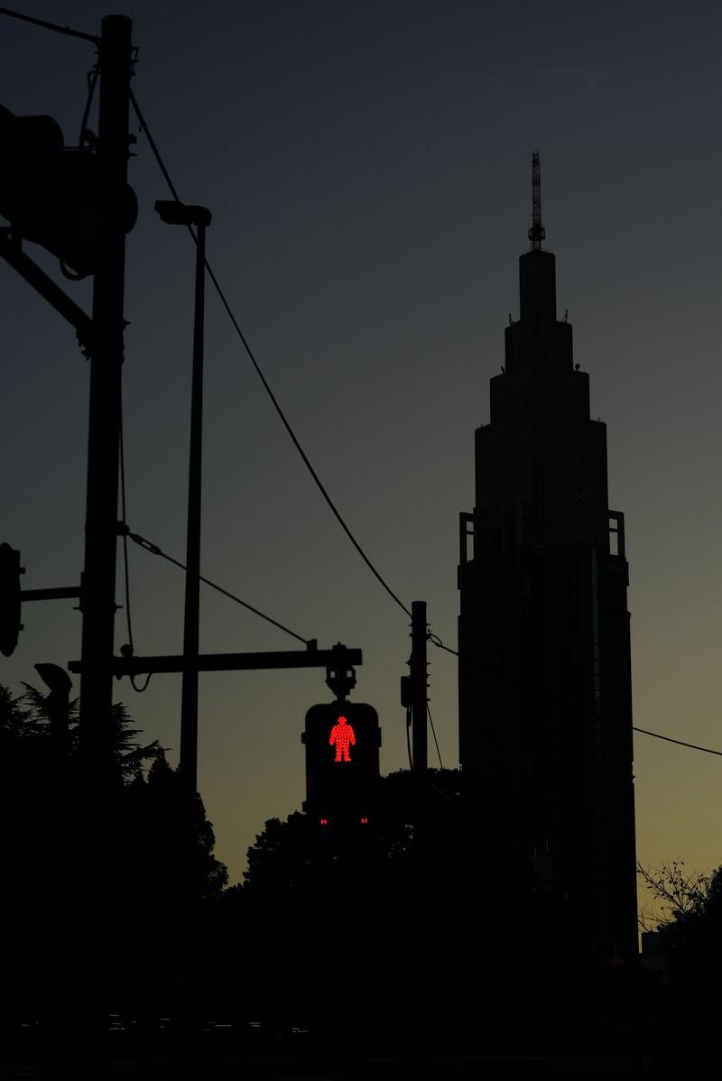 「赤信号とドコモタワー」の写真
