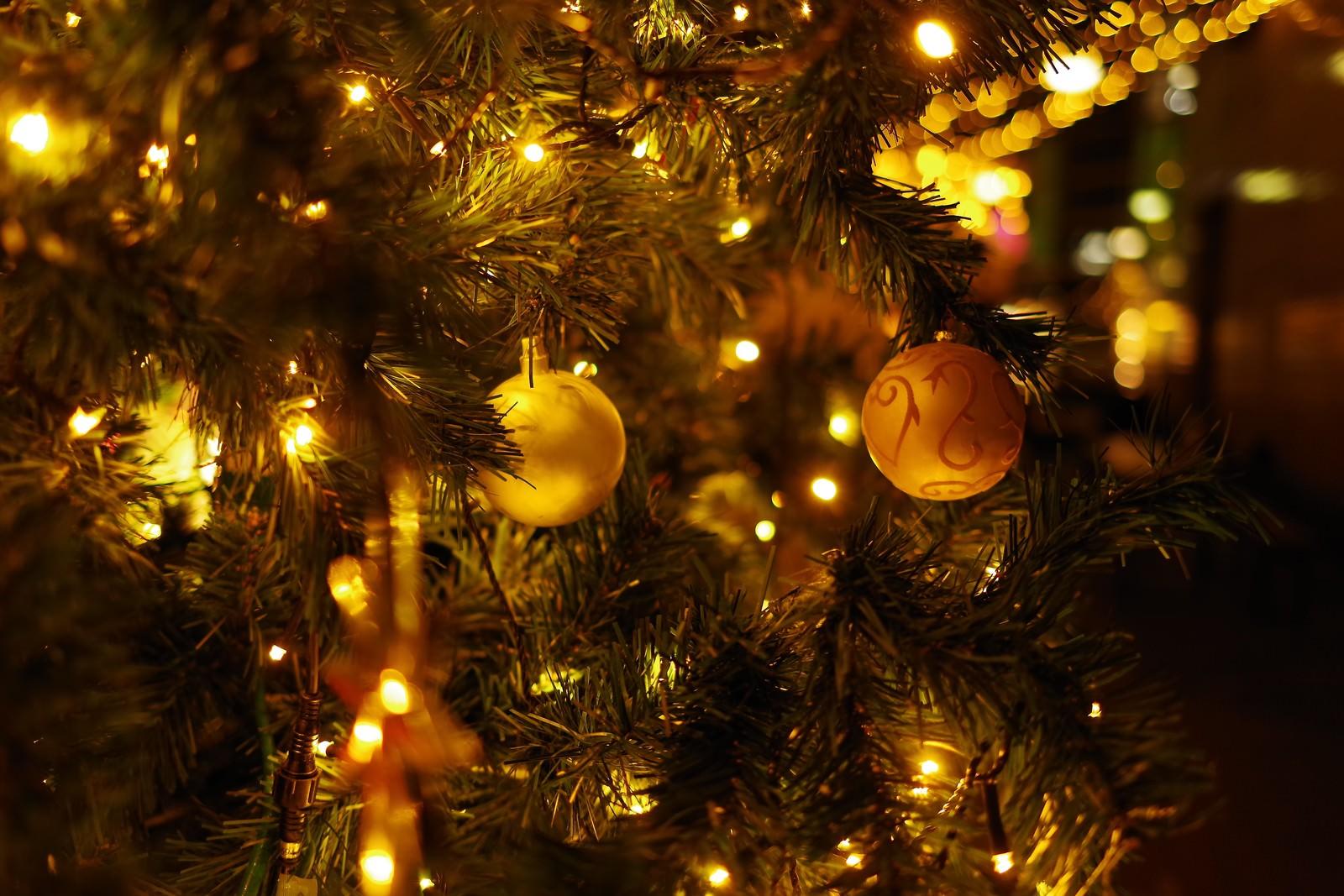 「クリスマスツリーの装飾」の写真