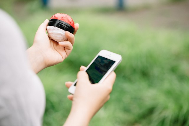 直感を信じて紅白ボールで相棒を探すの写真