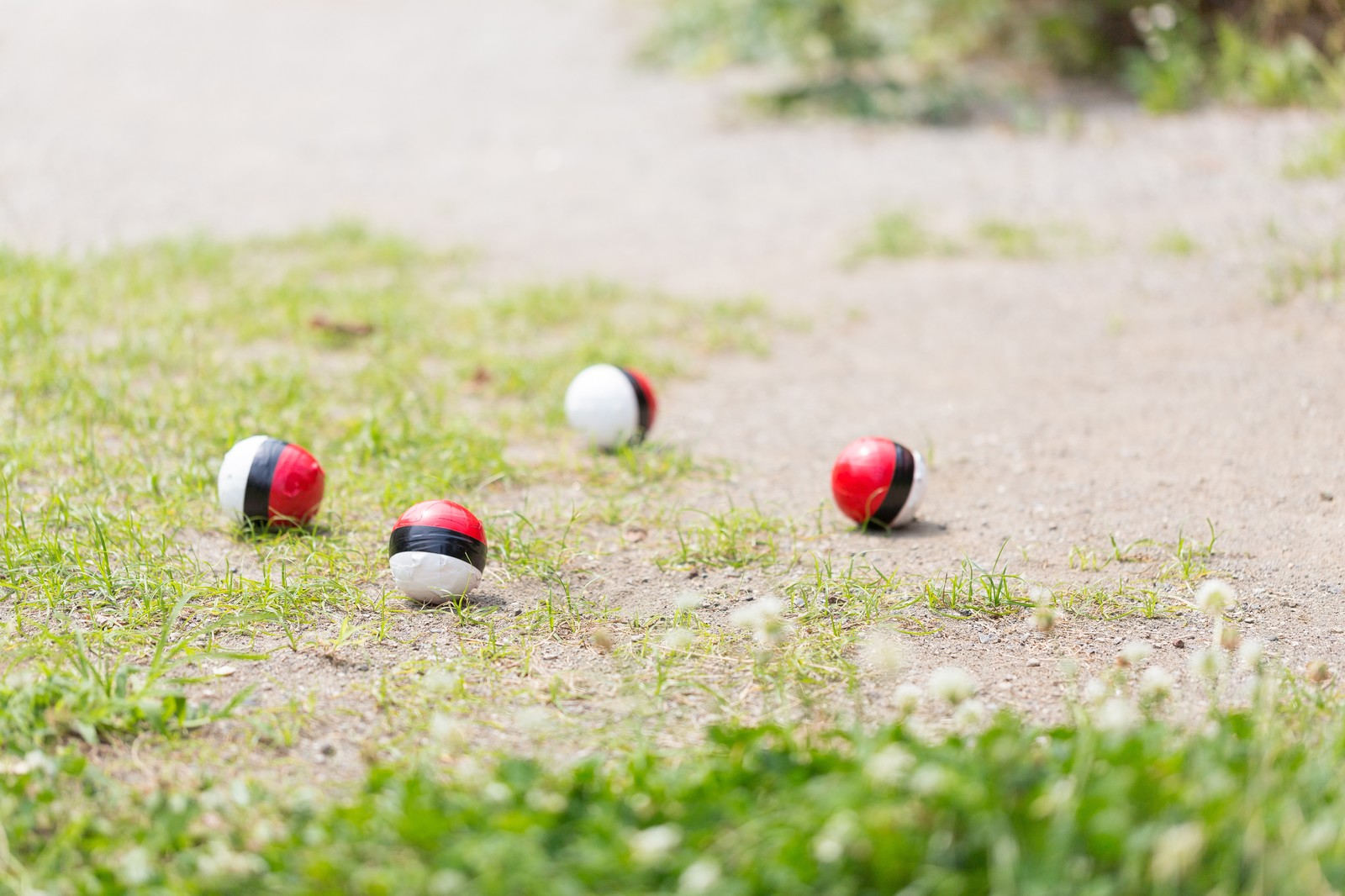 「友人に場所を知らせたら紅白ボールが集まった」の写真