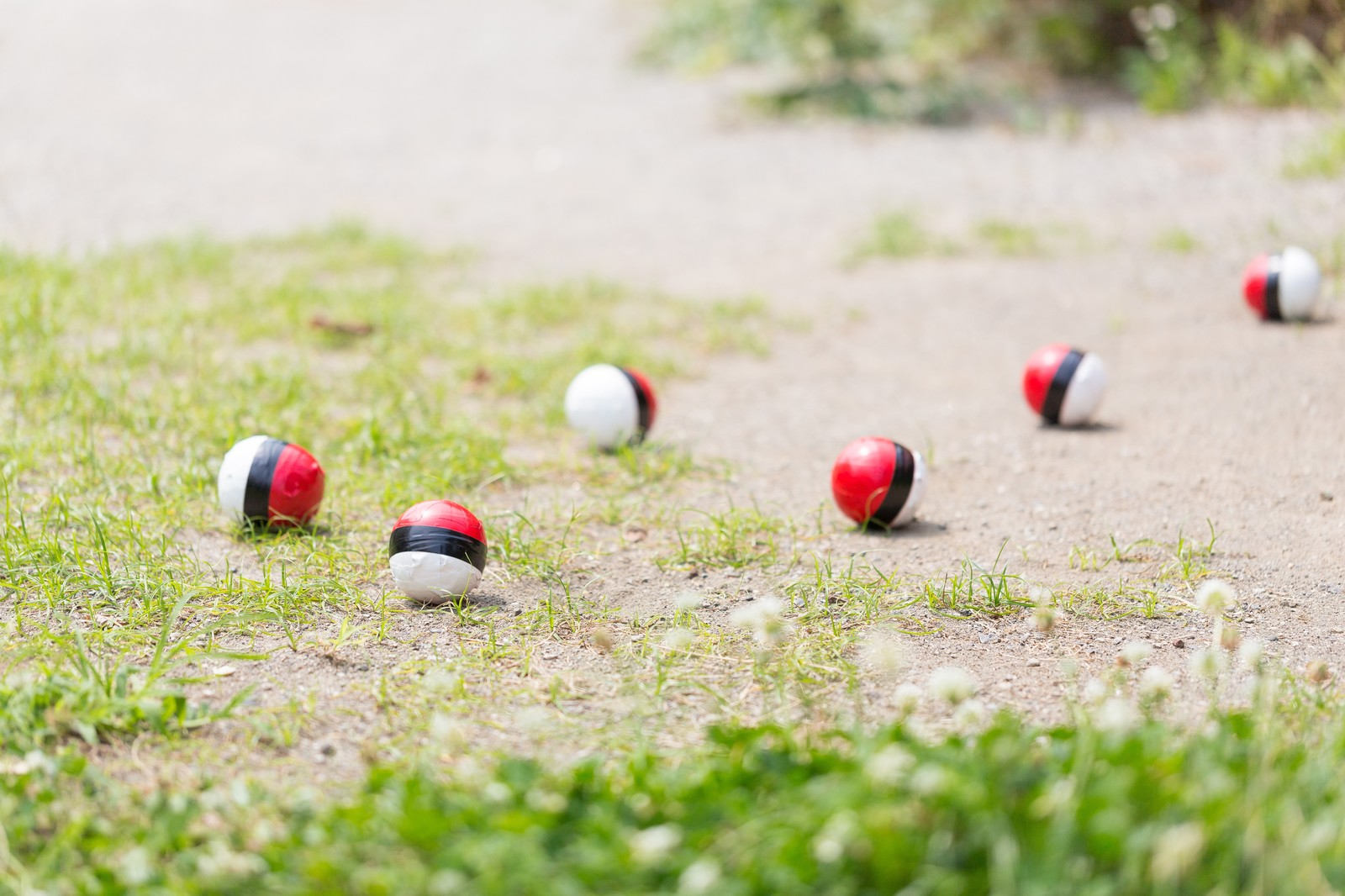 「仲間内で紅白ボールのグループが作られた」の写真