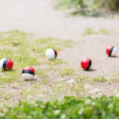 「仲間内で紅白ボールのグループが作られた」の写真素材