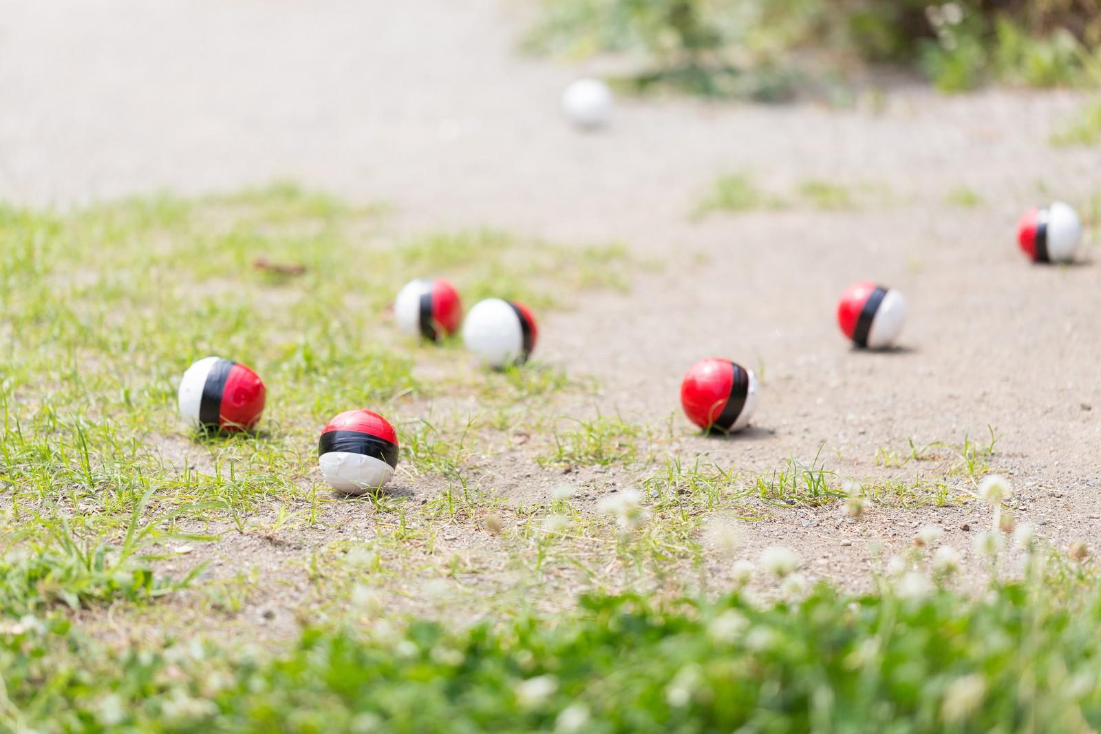 「近くに住む紅白ボールが次第に集まってきた」の写真