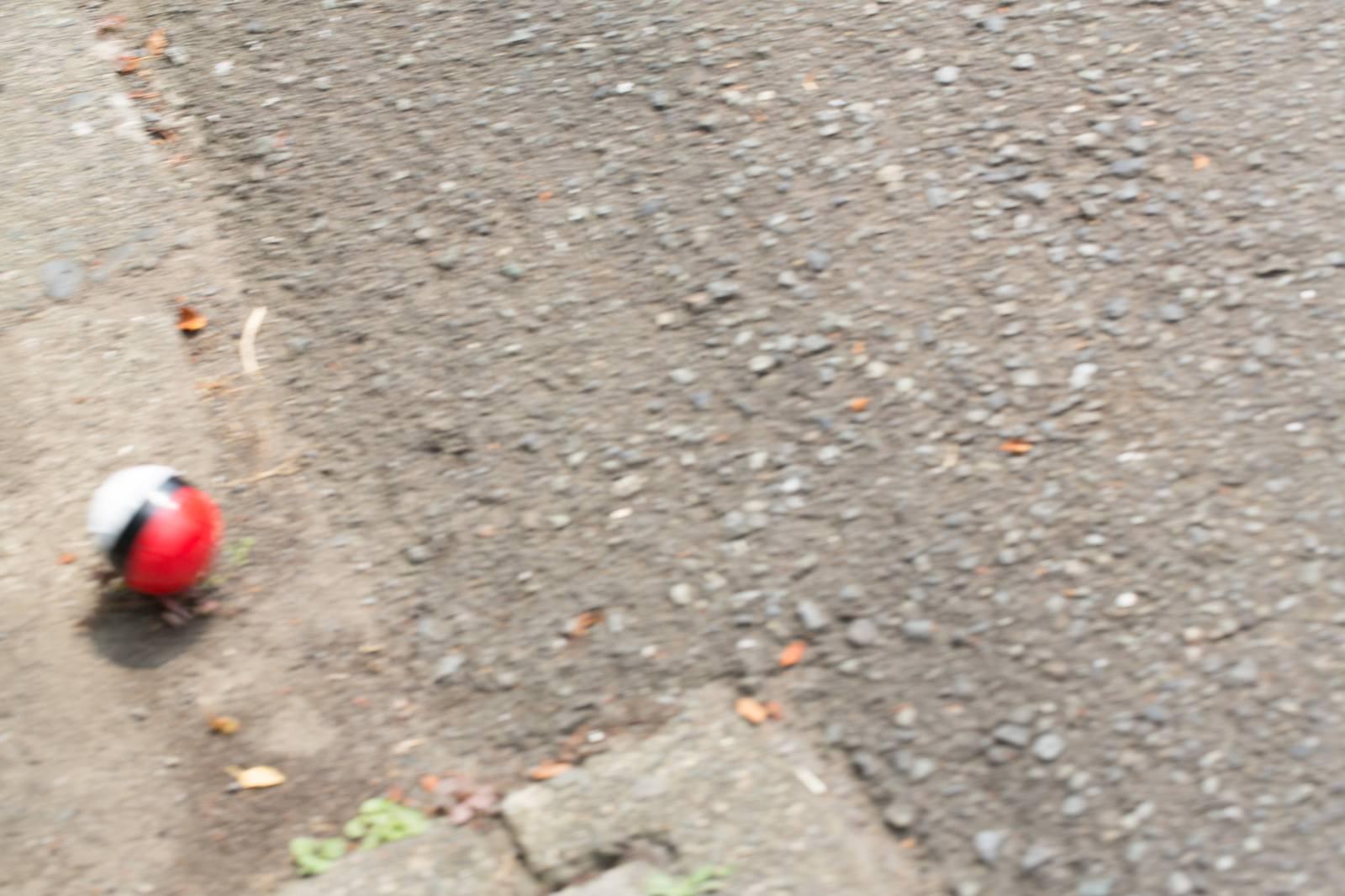 「道端に転がる紅白ボールをゲット」の写真