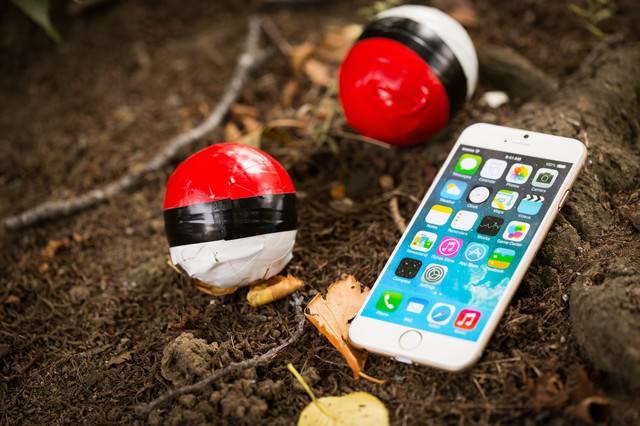 森の奥にレアな紅白ボールを発見の写真