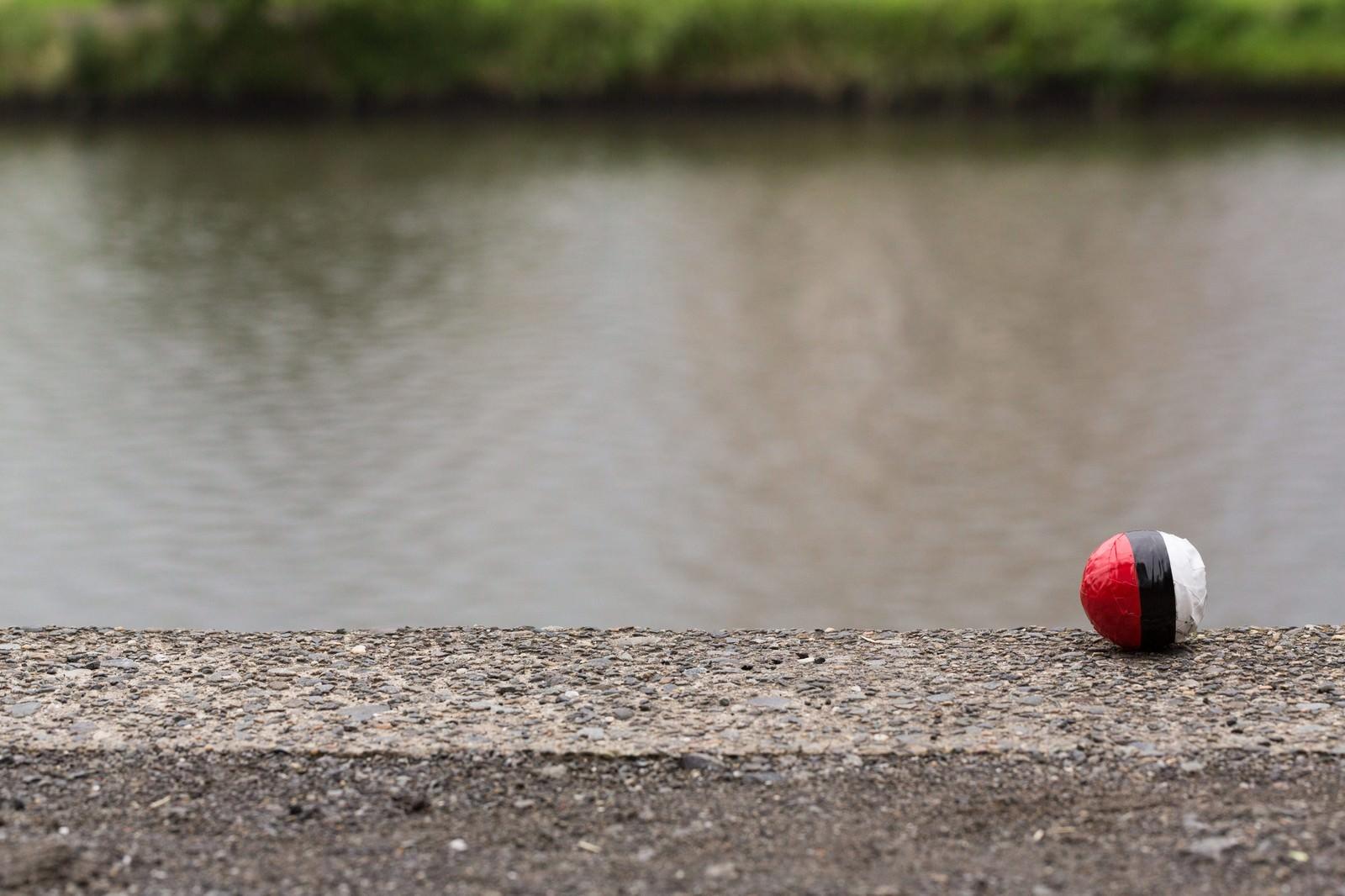 「水辺に落ちていた紅白ボールをゲット」の写真