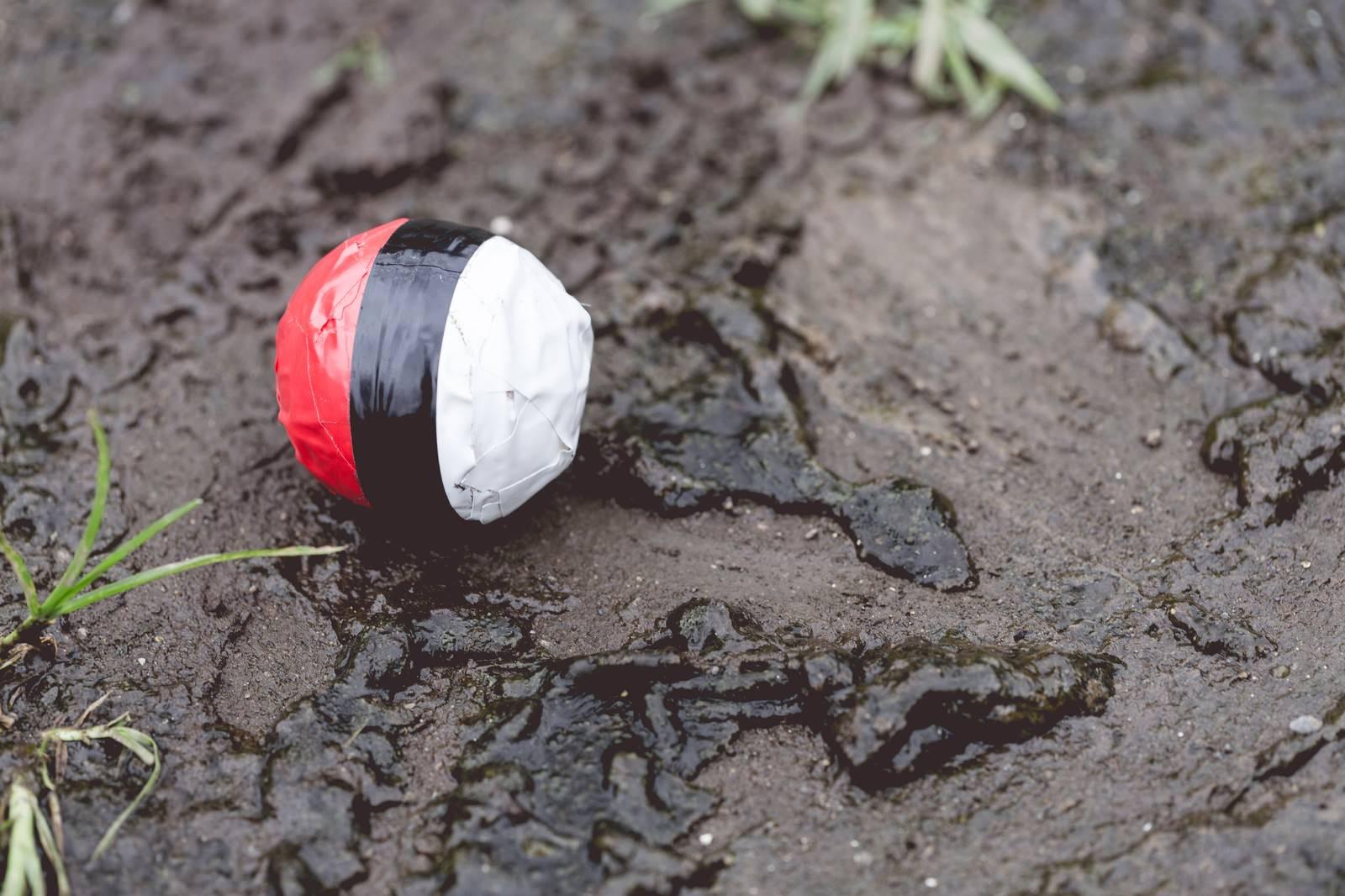 「水辺(泥)付近に落ちてた紅白ボール」の写真