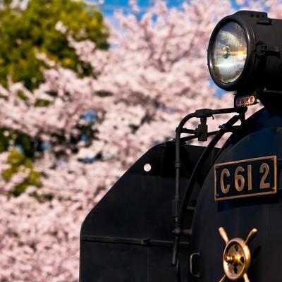 「桜とSL(汽車)」の写真素材