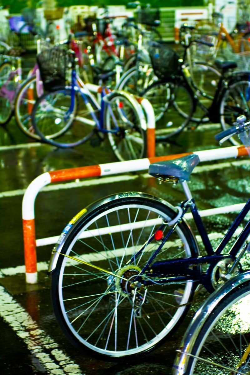 「雨に濡れた自転車」の写真