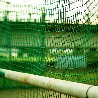 グランドのネット裏の写真