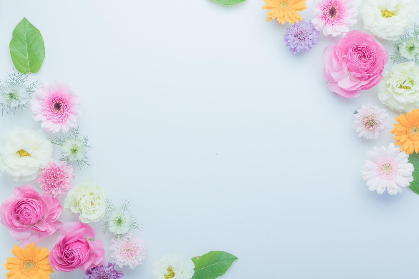「お花とホワイトボード」の写真