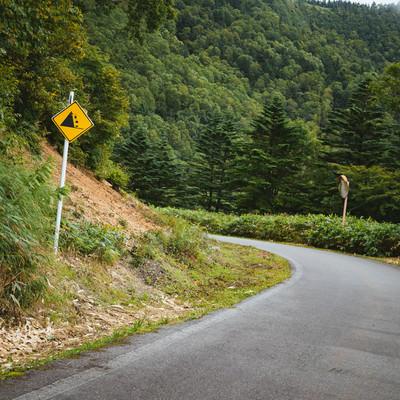 「落石注意の看板と峠道」の写真素材