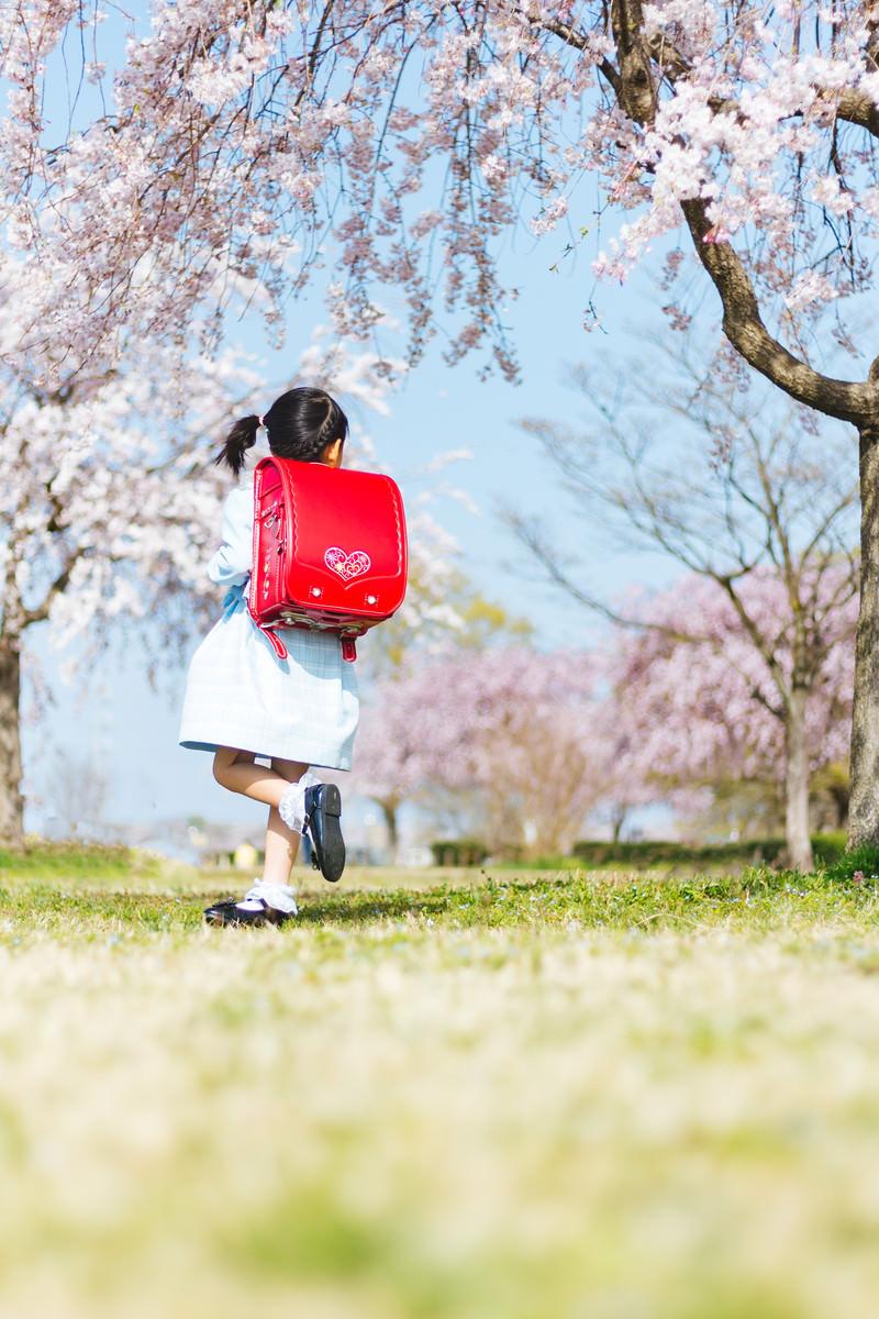 「ランドセルを背負った一年生」の写真[モデル:あんじゅ]