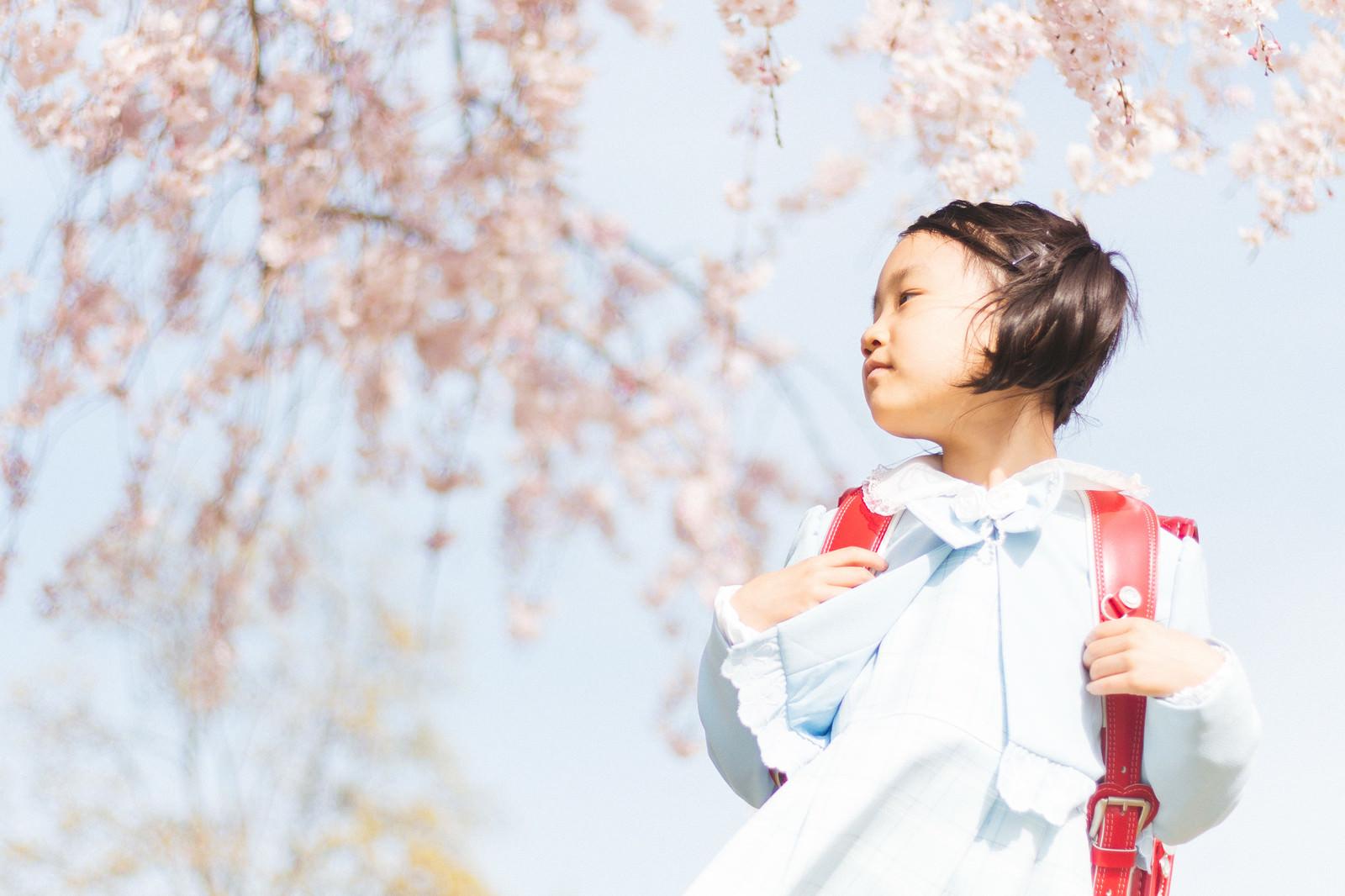 「ピカピカ一年生ピカピカ一年生」[モデル:あんじゅ]のフリー写真素材を拡大