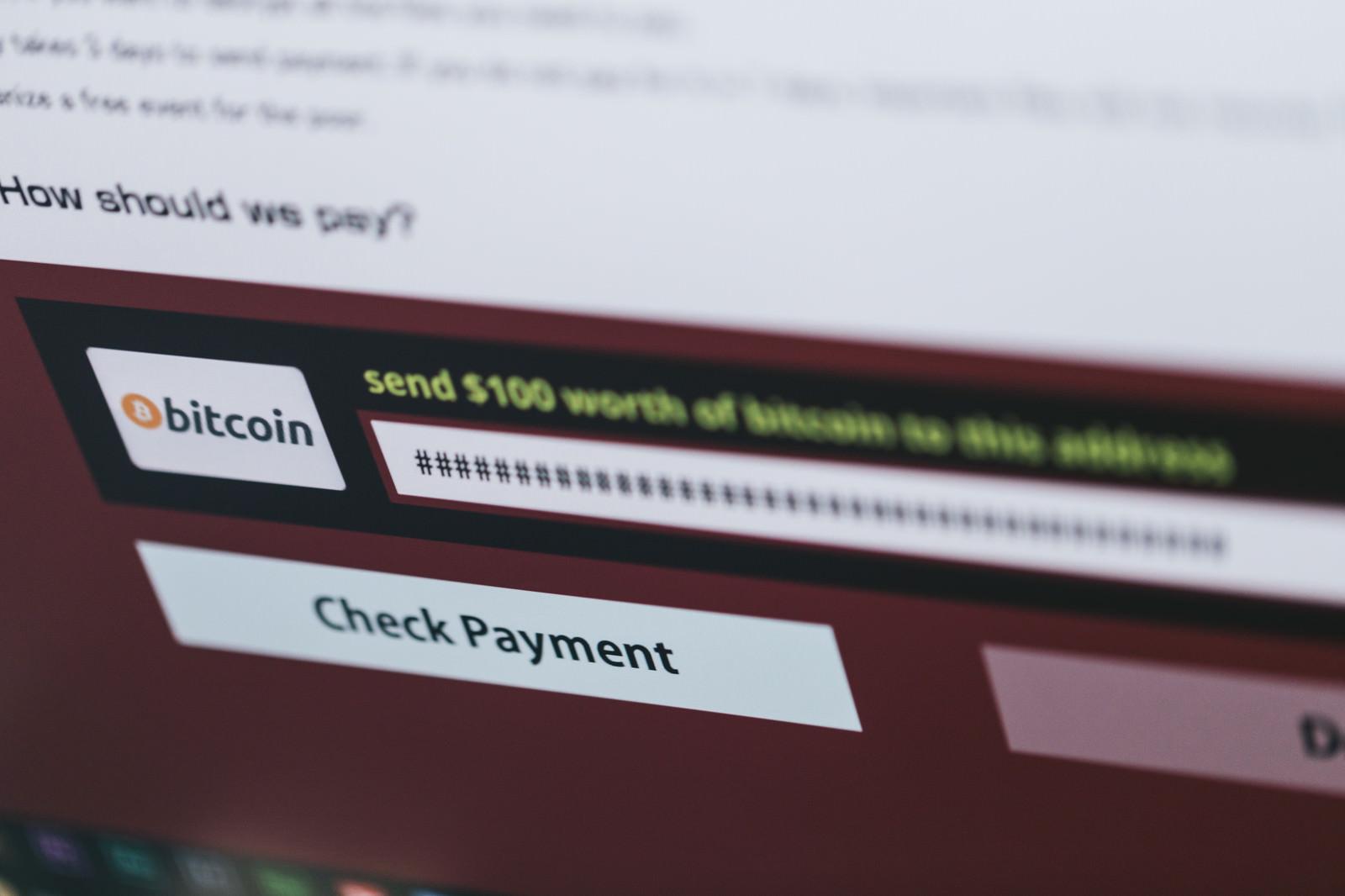 「ランサムウェアに表示された身代金請求(bitcoin)」の写真