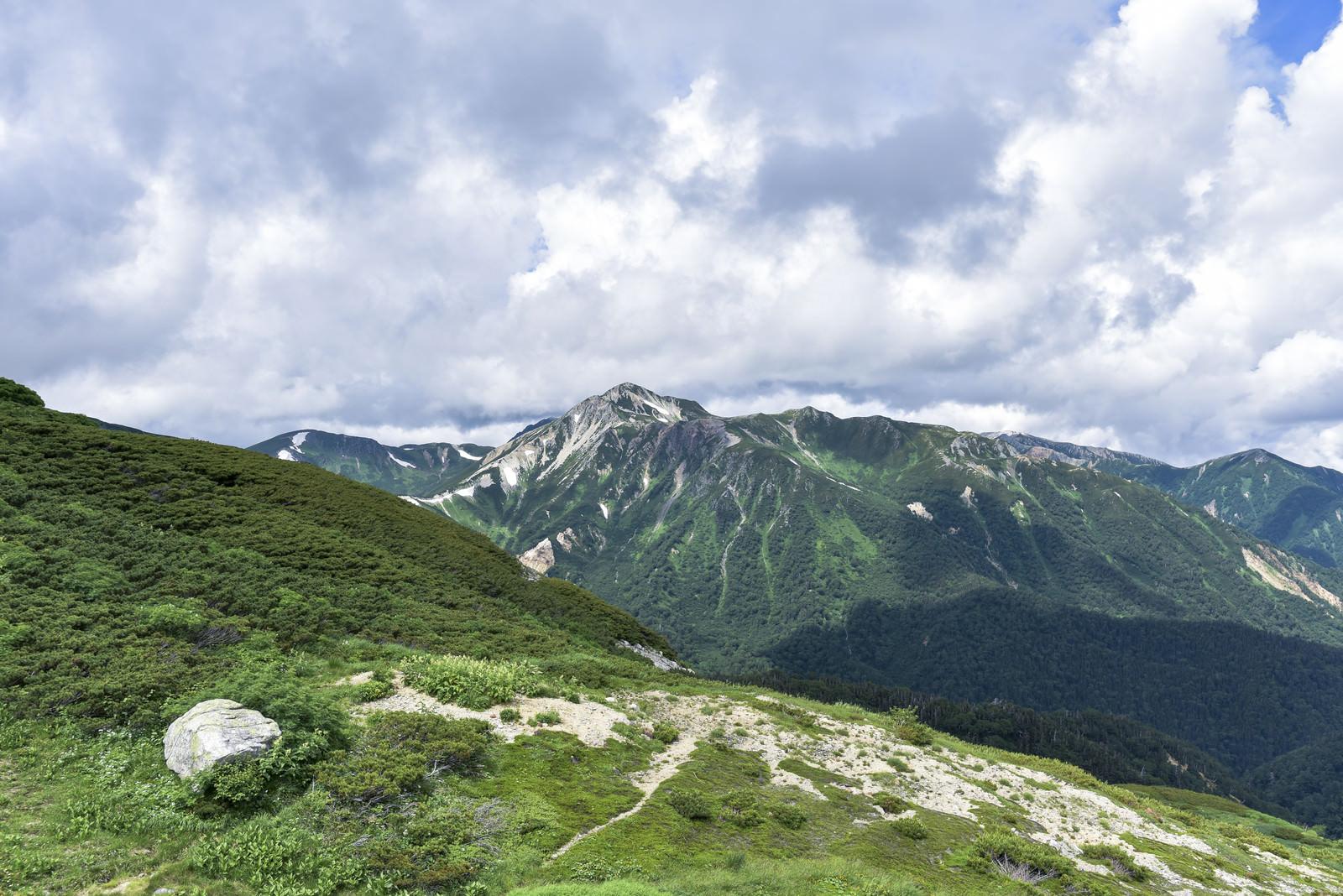 「双六岳手前から見る鷲羽岳(わしばだけ)」の写真