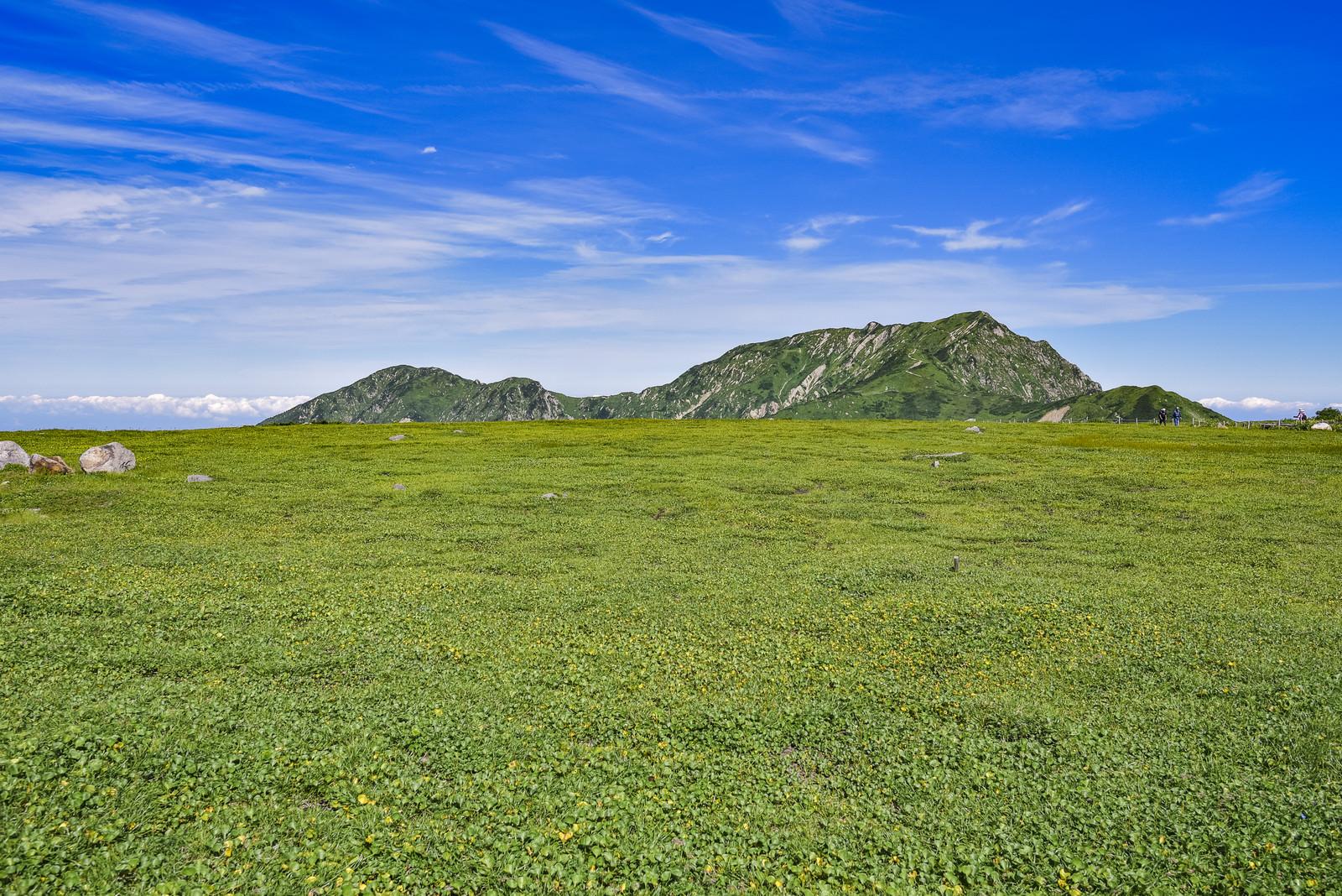 「立山室堂の草原の向こうにある奥大日岳」の写真