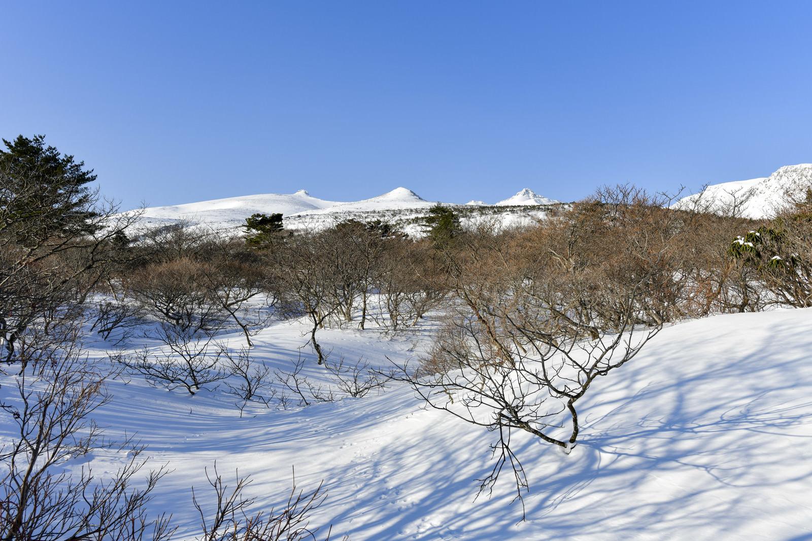 「安達太良山登山口付近から見る山頂方面」の写真