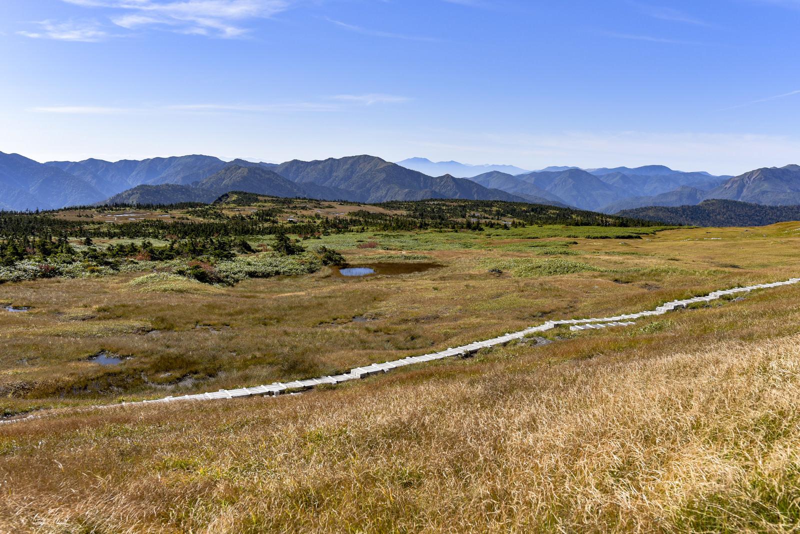 「山頂の広い高層湿原とそれを走る木道(苗場山)」の写真