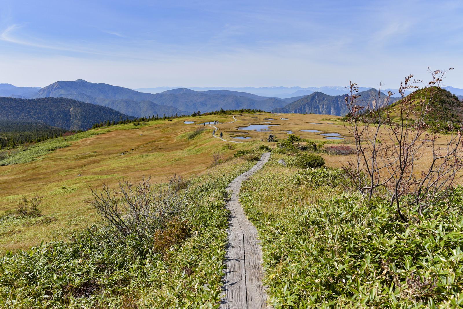 「苗場山坪平方面の景色」の写真