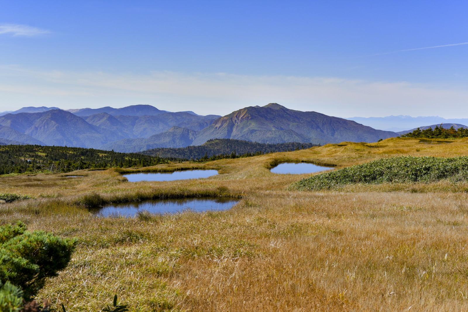 「顔のような池塘が目立つ苗場山(なえばさん)」の写真