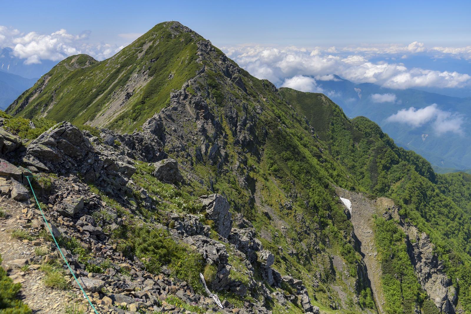 「仙丈ヶ岳方面から大仙ヶ丈岳方面へ向かう稜線」の写真