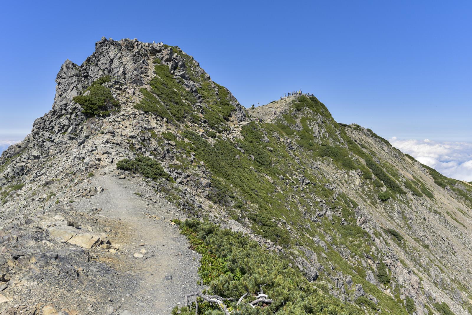 「岩とハイマツが広がる仙丈ヶ岳稜線の道」の写真