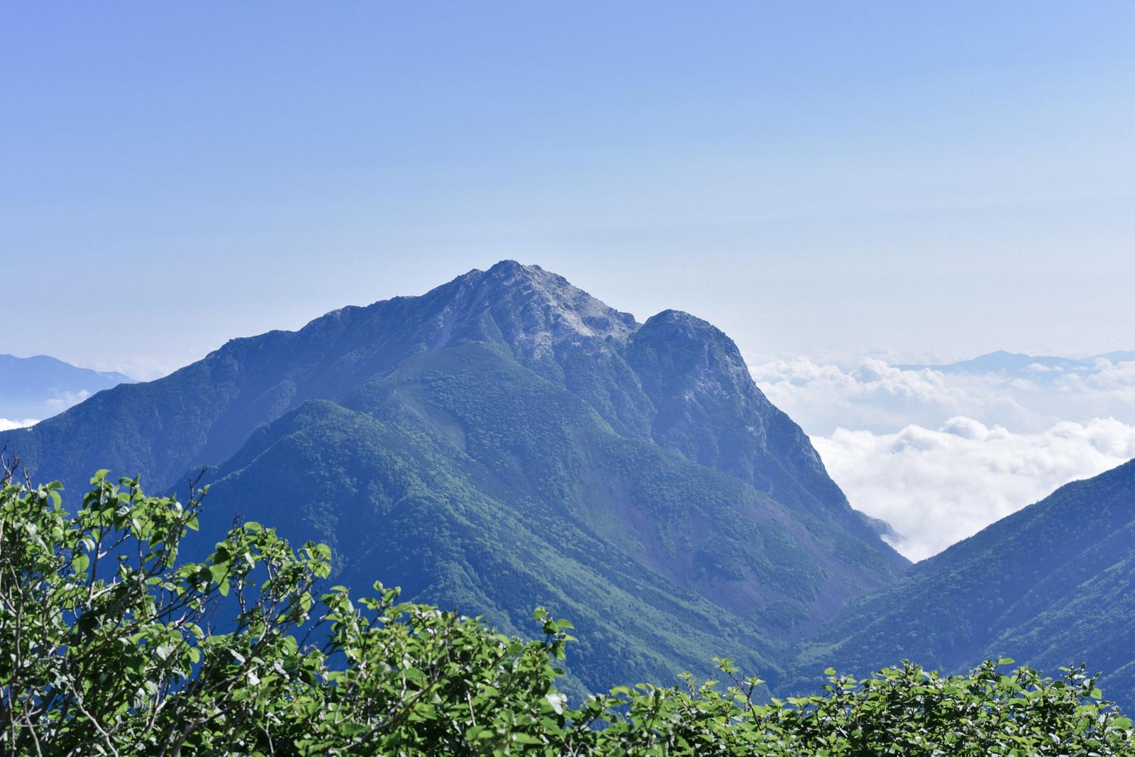 「特徴的な山頂を持つ甲斐駒ヶ岳(仙丈ヶ岳)」の写真