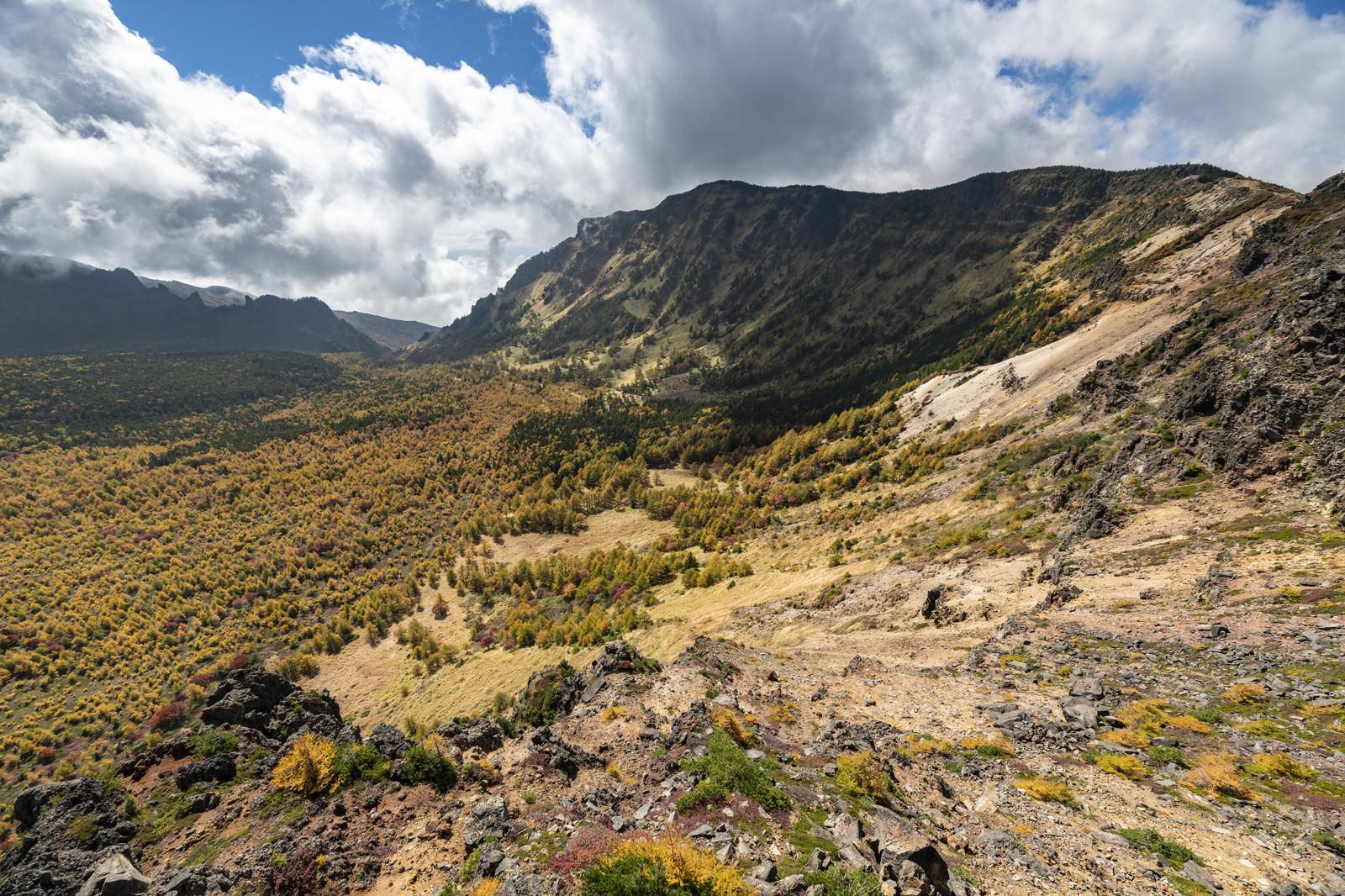 「紅葉の黒斑山稜線(浅間山)」の写真