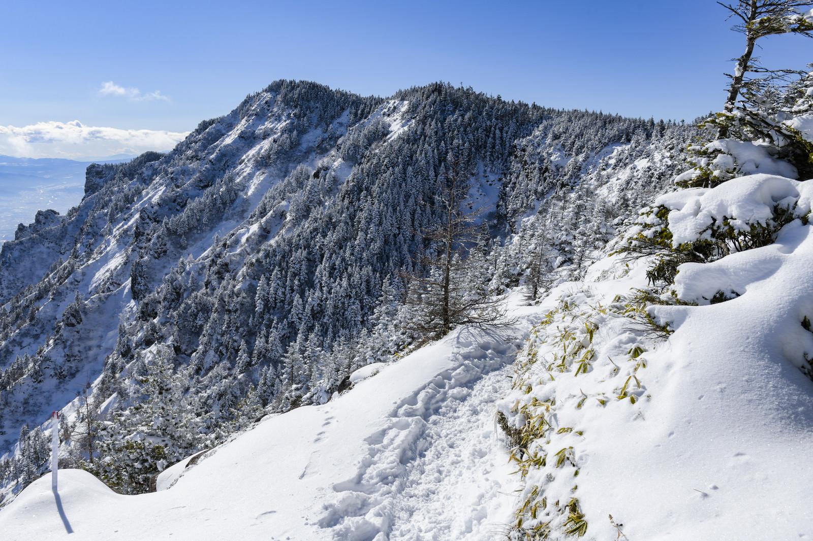 「蛇骨山へと向かう稜線から見る黒斑山(浅間山)」の写真